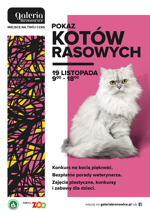 The Show of Purebred Cats at GaleriaBronowice